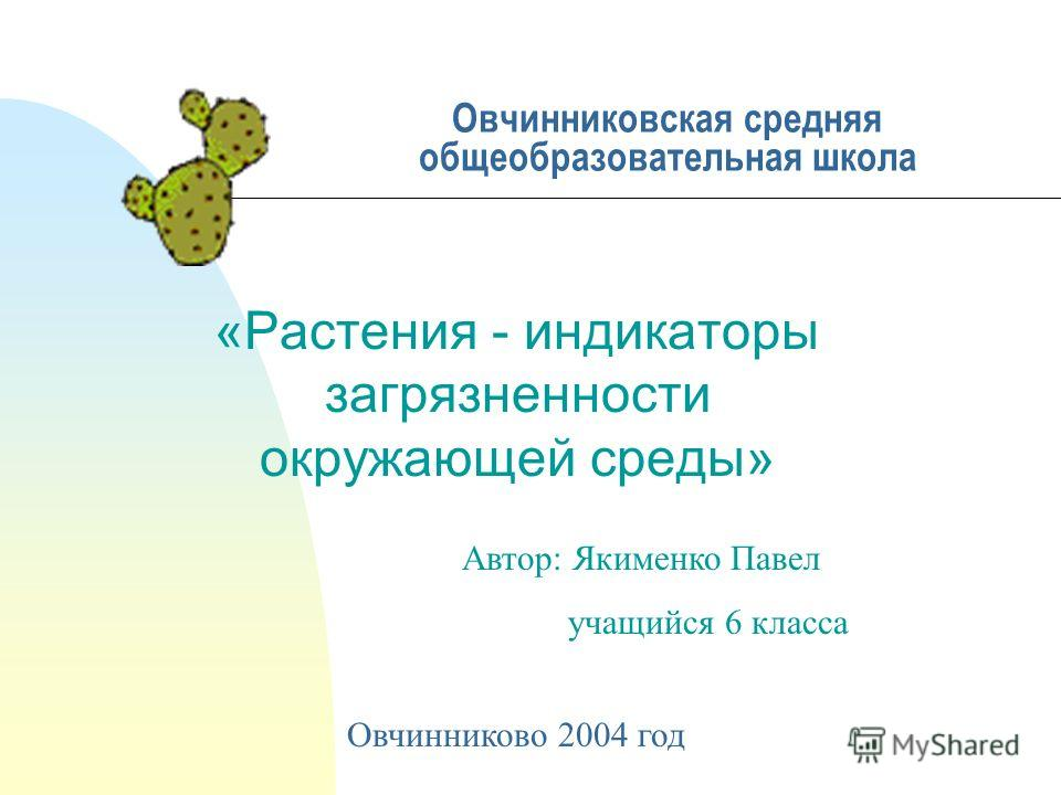 «Растения - индикаторы загрязненности окружающей среды» Овчинниковская средняя общеобразовательная школа Автор: Якименко Павел учащийся 6 класса Овчинниково 2004 год