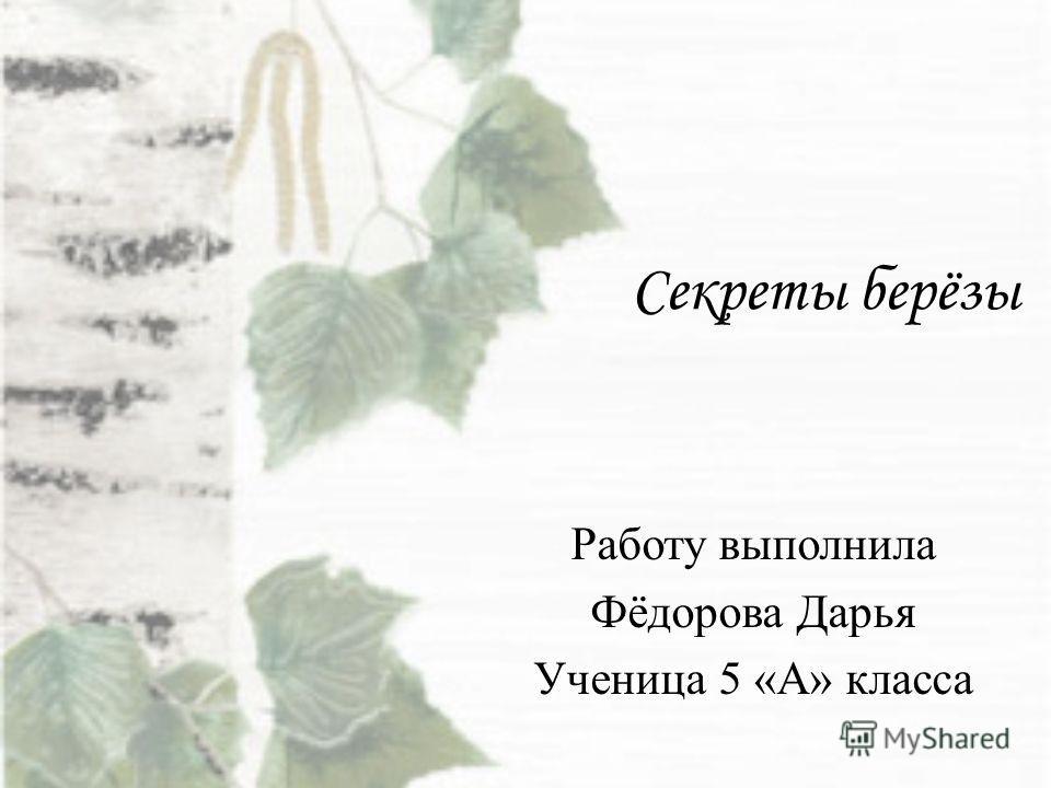 Секреты берёзы Работу выполнила Фёдорова Дарья Ученица 5 «А» класса