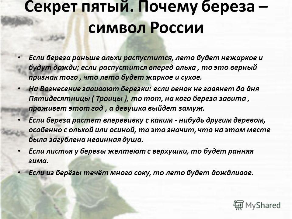 Секрет пятый. Почему береза – символ России Если береза раньше ольхи распустится, лето будет нежаркое и будут дожди; если распустится вперед ольха, то это верный признак того, что лето будет жаркое и сухое. На Вознесение завивают березки: если венок