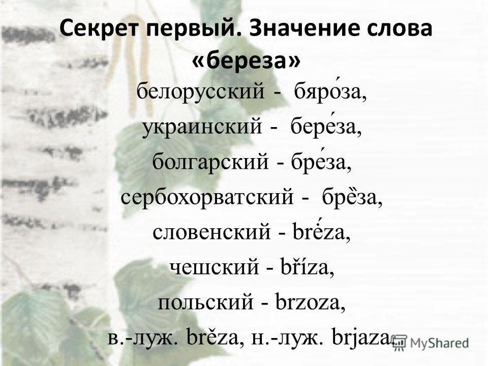 Секрет первый. Значение слова «береза» белорусский - бяро́за, украинский - бере́за, болгарский - бре́за, сербохорватский - бре ̏ за, словенский - brė́za, чешский - bříza, польский - brzoza, в.-луж. brěza, н.-луж. brjaza.
