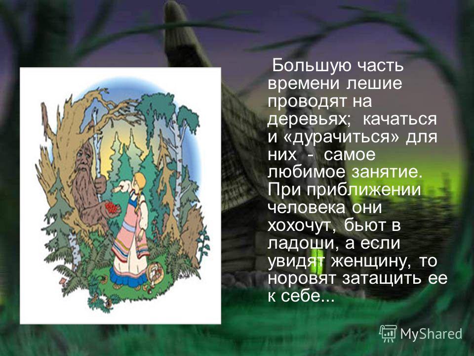 Большую часть времени лешие проводят на деревьях; качаться и «дурачиться» для них - самое любимое занятие. При приближении человека они хохочут, бьют в ладоши, а если увидят женщину, то норовят затащить ее к себе...