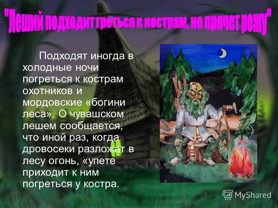 Подходят иногда в холодные ночи погреться к кострам охотников и мордовские «богини леса». О чувашском лешем сообщается, что иной раз, когда дровосеки разложат в лесу огонь, «упете приходит к ним погреться у костра.