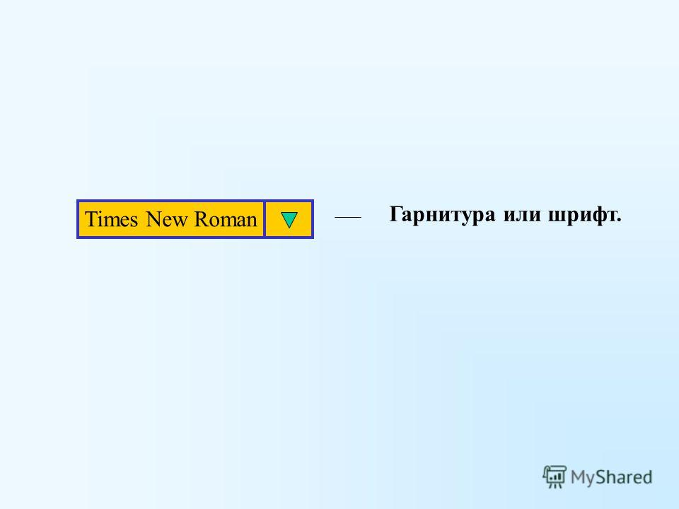 Times New Roman Гарнитура или шрифт.