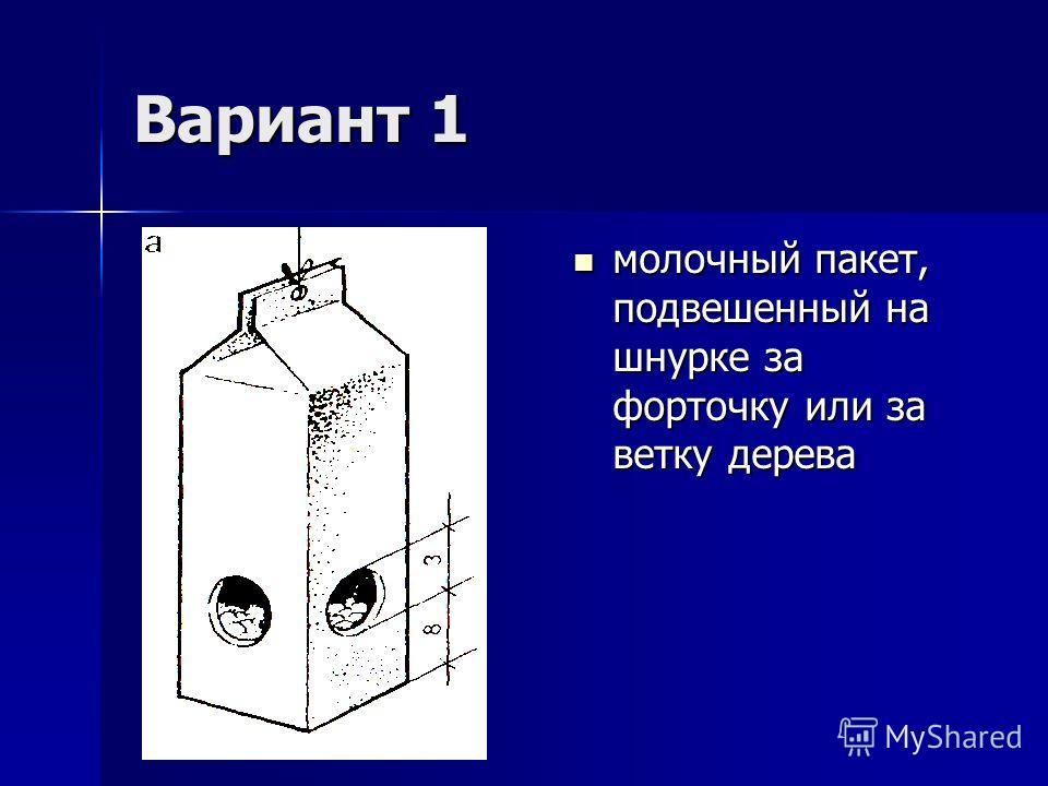 Вариант 1 молочный пакет, подвешенный на шнурке за форточку или за ветку дерева молочный пакет, подвешенный на шнурке за форточку или за ветку дерева