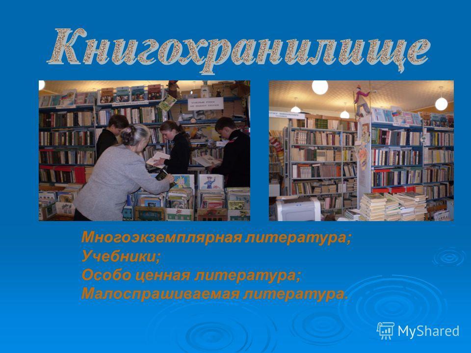 Многоэкземплярная литература; Учебники; Особо ценная литература; Малоспрашиваемая литература.