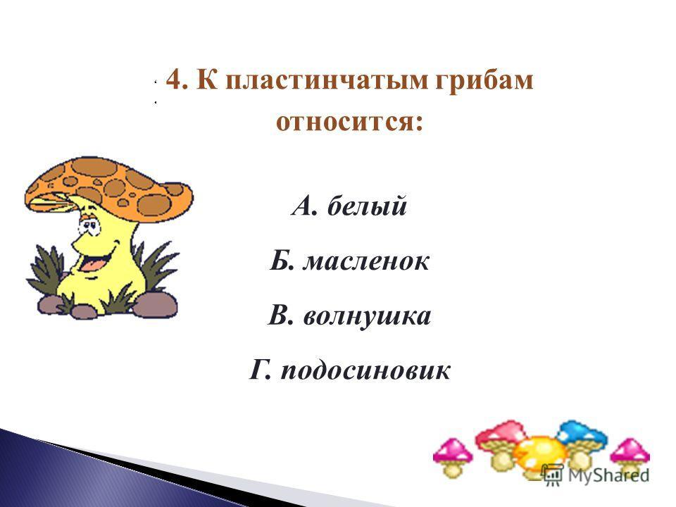 3.К трубчатым грибам относится: А. сыроежка Б. рыжик В. опенок Г. подберезовик