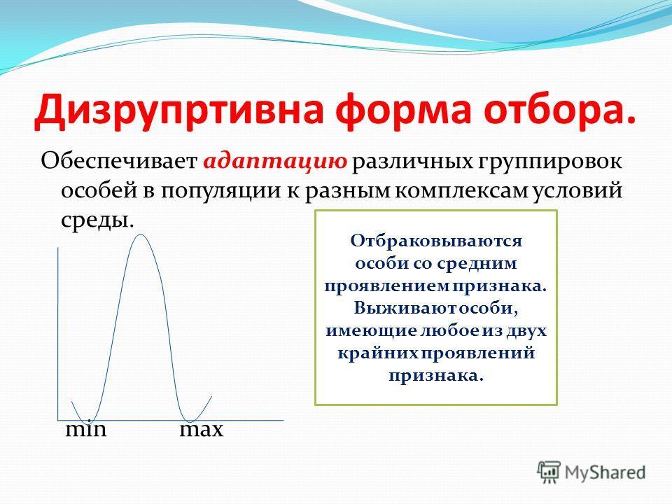 Дизрупртивна форма отбора. Обеспечивает адаптацию различных группировок особей в популяции к разным комплексам условий среды. min max Отбраковываются особи со средним проявлением признака. Выживают особи, имеющие любое из двух крайних проявлений приз