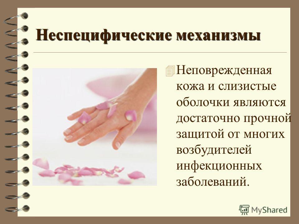 Неспецифические механизмы 4 Неповрежденная кожа и слизистые оболочки являются достаточно прочной защитой от многих возбудителей инфекционных заболеваний.