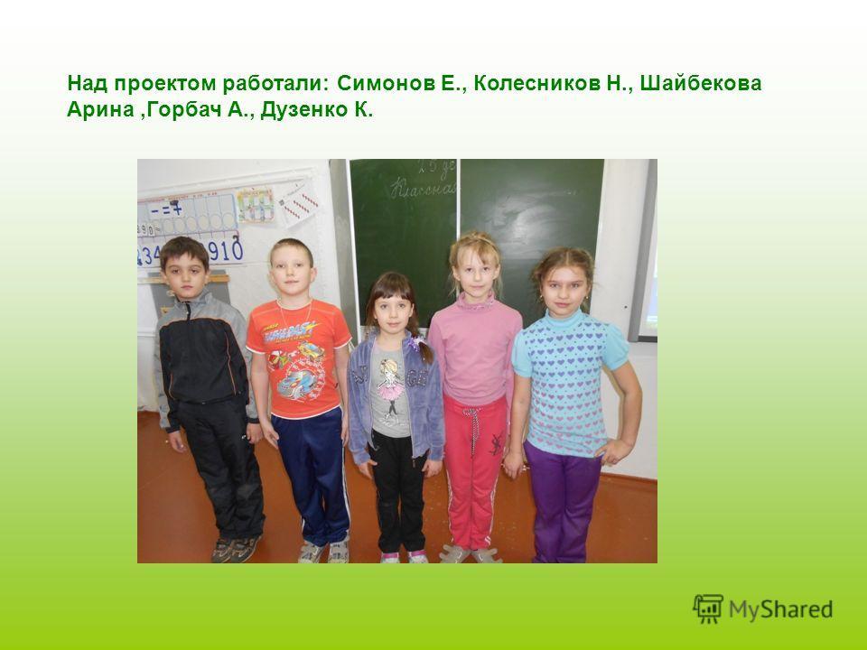 Над проектом работали: Симонов Е., Колесников Н., Шайбекова Арина,Горбач А., Дузенко К.