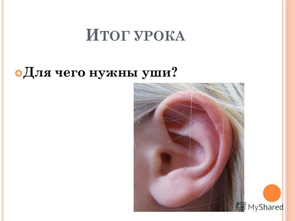 И ТОГ УРОКА Для чего нужны уши?