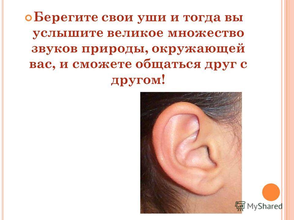 Берегите свои уши и тогда вы услышите великое множество звуков природы, окружающей вас, и сможете общаться друг с другом!