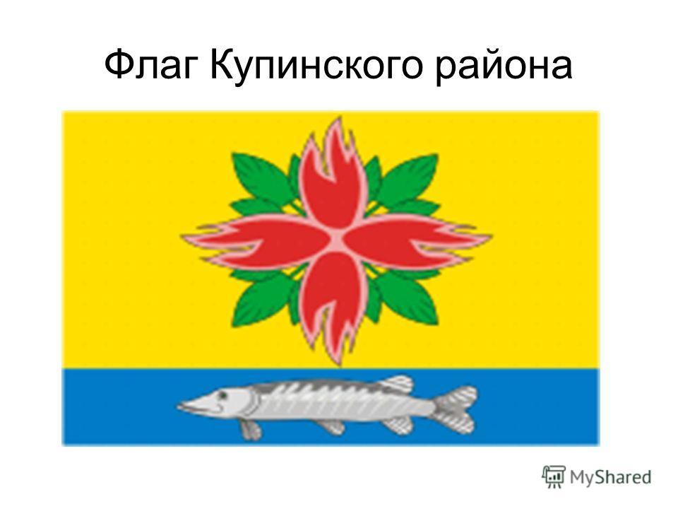 Флаг Купинского района