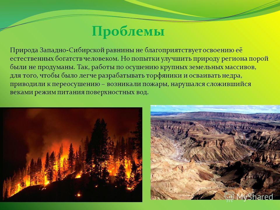 Проблемы Природа Западно-Сибирской равнины не благоприятствует освоению её естественных богатств человеком. Но попытки улучшить природу региона порой были не продуманы. Так, работы по осушению крупных земельных массивов, для того, чтобы было легче ра