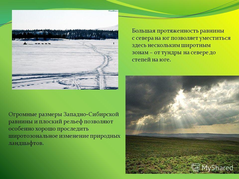 Большая протяженность равнины с севера на юг позволяет уместиться здесь нескольким широтным зонам – от тундры на севере до степей на юге. Огромные размеры Западно-Сибирской равнины и плоский рельеф позволяют особенно хорошо проследить широтозональное