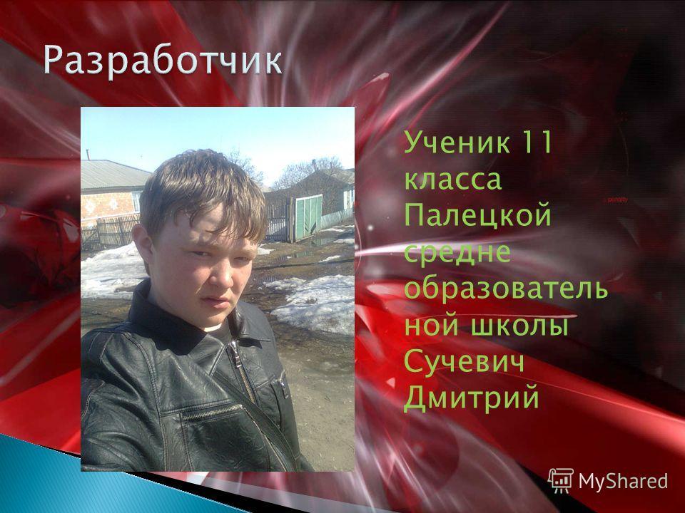 Ученик 11 класса Палецкой средне образователь ной школы Сучевич Дмитрий