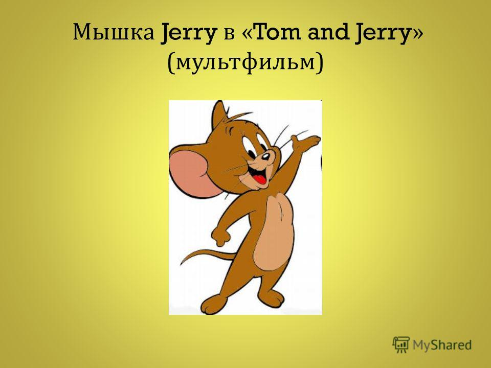 М ышка Jerry в «Tom and Jerry» ( мультфильм )