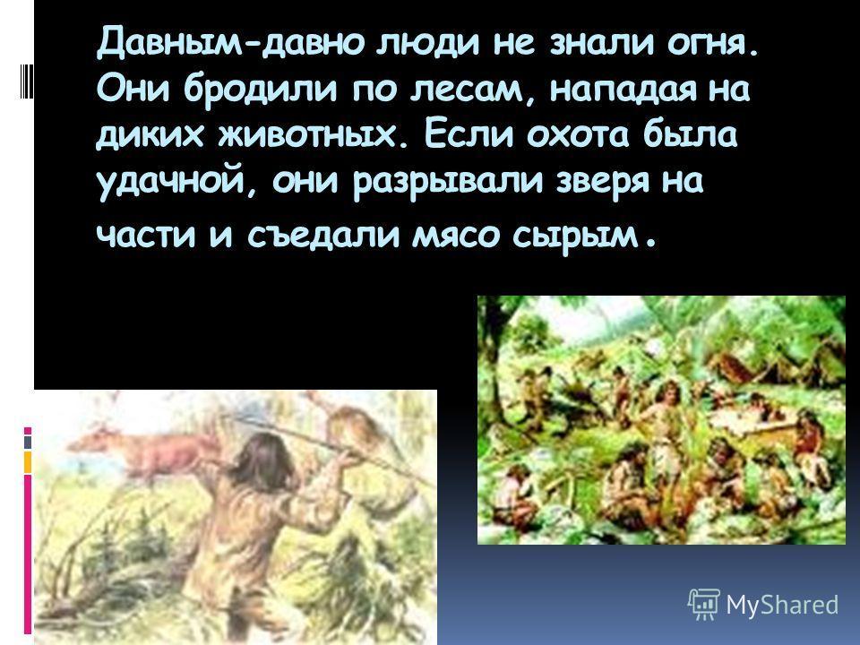 Давным-давно люди не знали огня. Они бродили по лесам, нападая на диких животных. Если охота была удачной, они разрывали зверя на части и съедали мясо сырым.