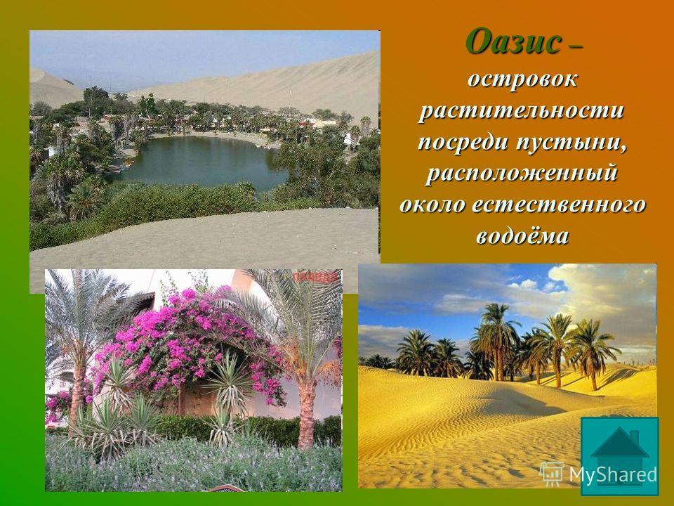 Оазис – островок растительности посреди пустыни, расположенный около естественного водоёма