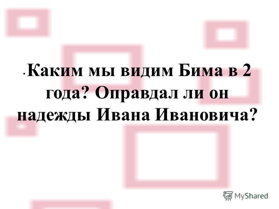 Каким мы видим Бима в 2 года? Оправдал ли он надежды Ивана Ивановича?