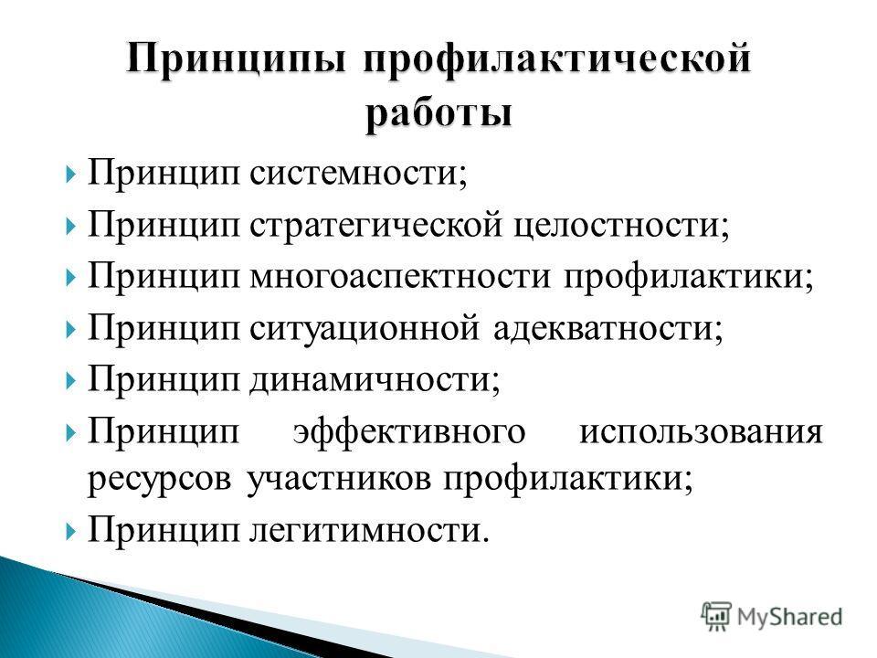 Принцип системности; Принцип стратегической целостности; Принцип многоаспектности профилактики; Принцип ситуационной адекватности; Принцип динамичности; Принцип эффективного использования ресурсов участников профилактики; Принцип легитимности.