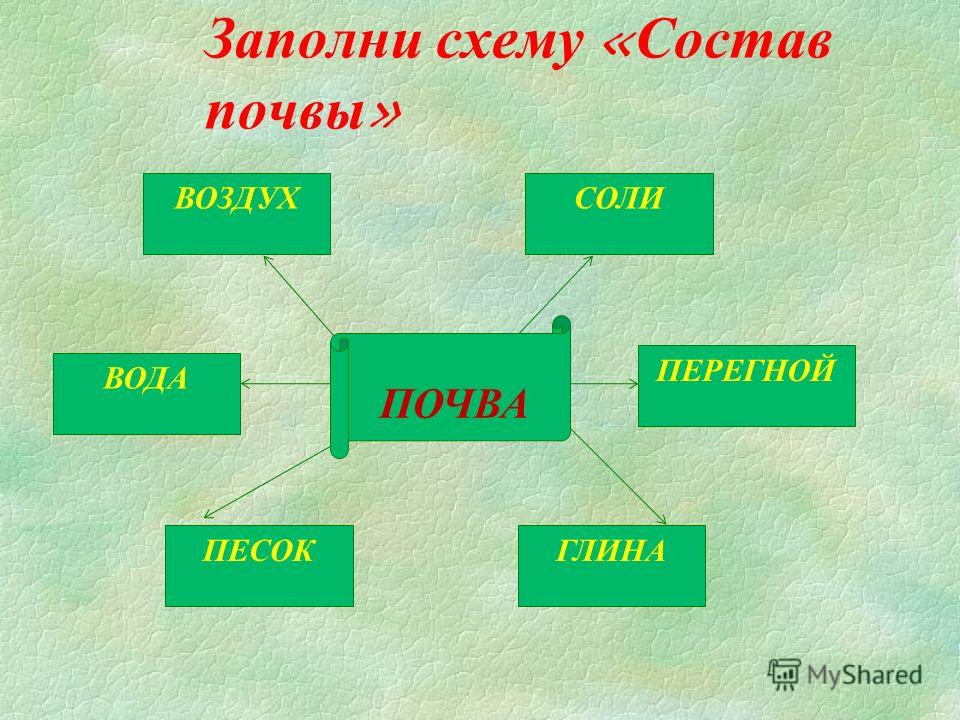 Заполни схему «Состав почвы» СОЛИ ПЕРЕГНОЙ ГЛИНАПЕСОК ВОДА ВОЗДУХ ПОЧВА