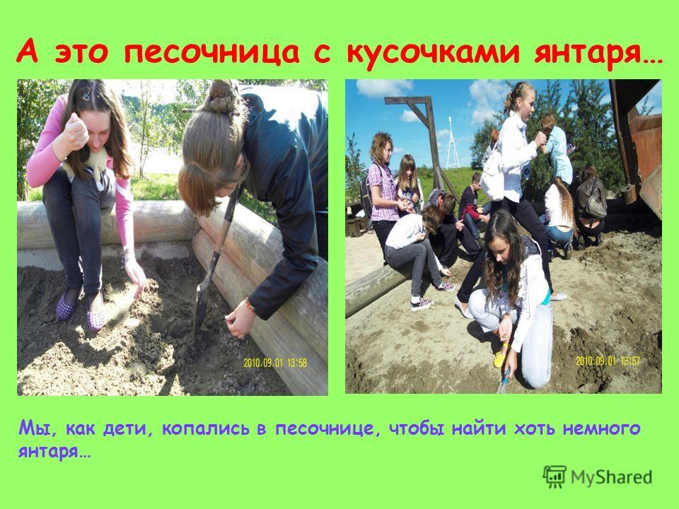 А это песочница с кусочками янтаря… Мы, как дети, копались в песочнице, чтобы найти хоть немного янтаря…