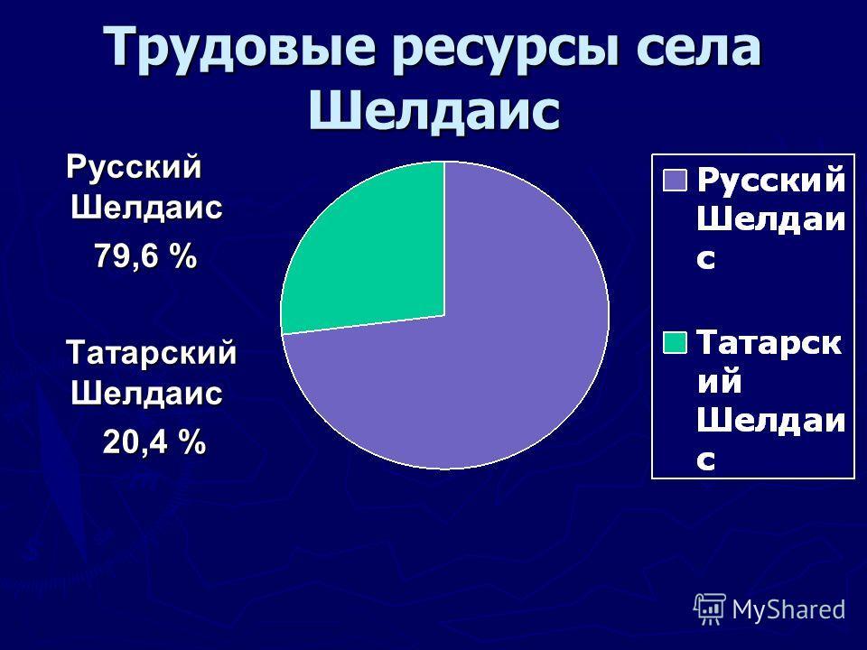 Трудовые ресурсы села Шелдаис Русский Шелдаис Русский Шелдаис 79,6 % 79,6 % Татарский Шелдаис Татарский Шелдаис 20,4 % 20,4 %