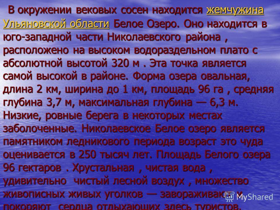 В окружении вековых сосен находится жемчужина Ульяновской области Белое Озеро. Оно находится в юго-западной части Николаевского района, расположено на высоком водораздельном плато с абсолютной высотой 320 м. Эта точка является самой высокой в районе.