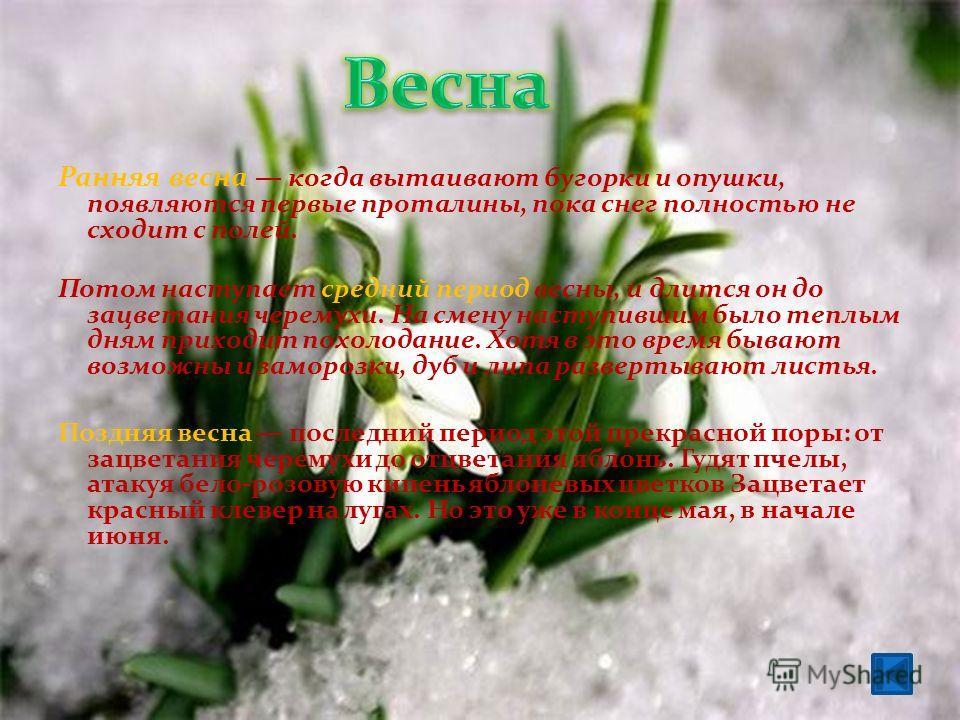 Ранняя весна когда вытаивают бугорки и опушки, появляются первые проталины, пока снег полностью не сходит с полей. Потом наступает средний период весны, и длится он до зацветания черемухи. На смену наступившим было теплым дням приходит похолодание. Х