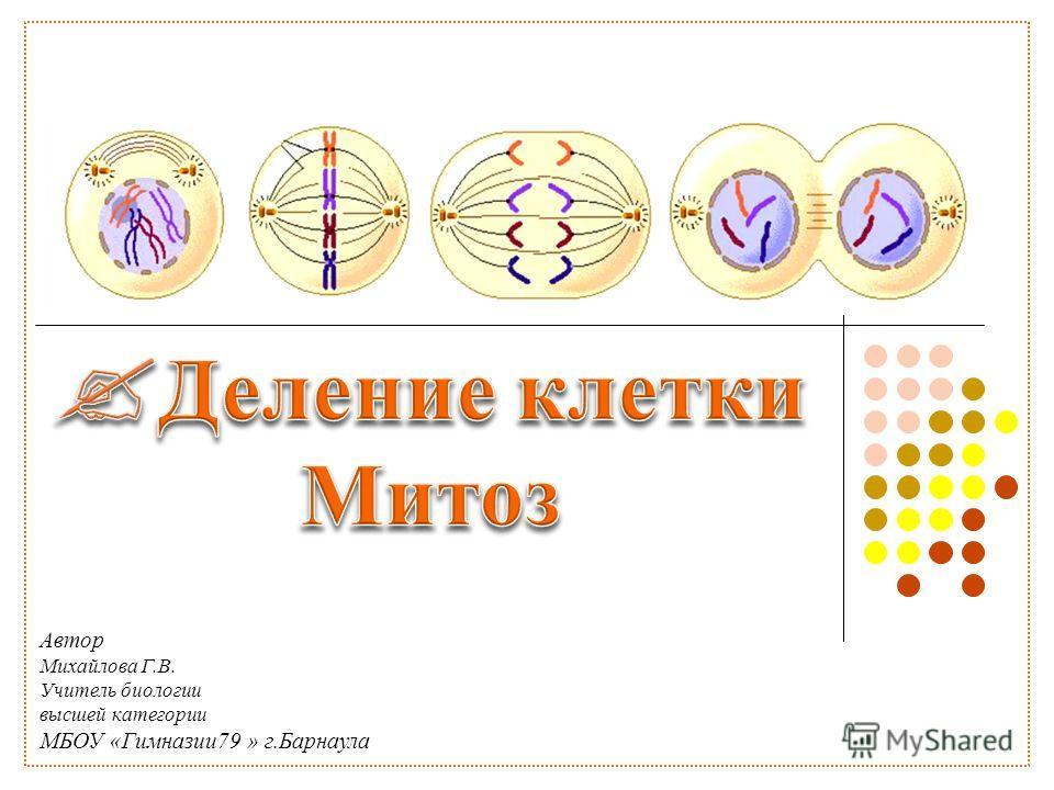 Автор Михайлова Г.В. Учитель биологии высшей категории МБОУ «Гимназии79 » г.Барнаула