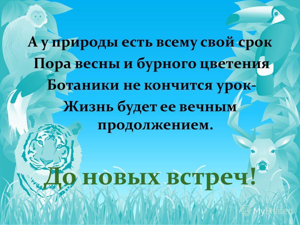 А у природы есть всему свой срок Пора весны и бурного цветения Ботаники не кончится урок- Жизнь будет ее вечным продолжением. До новых встреч!