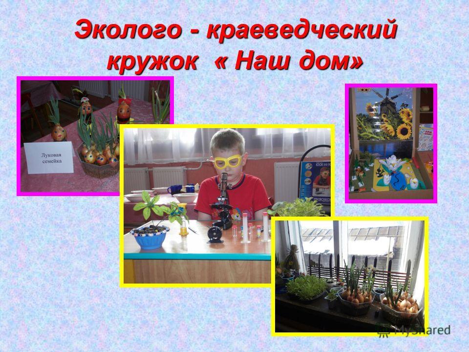 Эколого - краеведческий кружок « Наш дом»