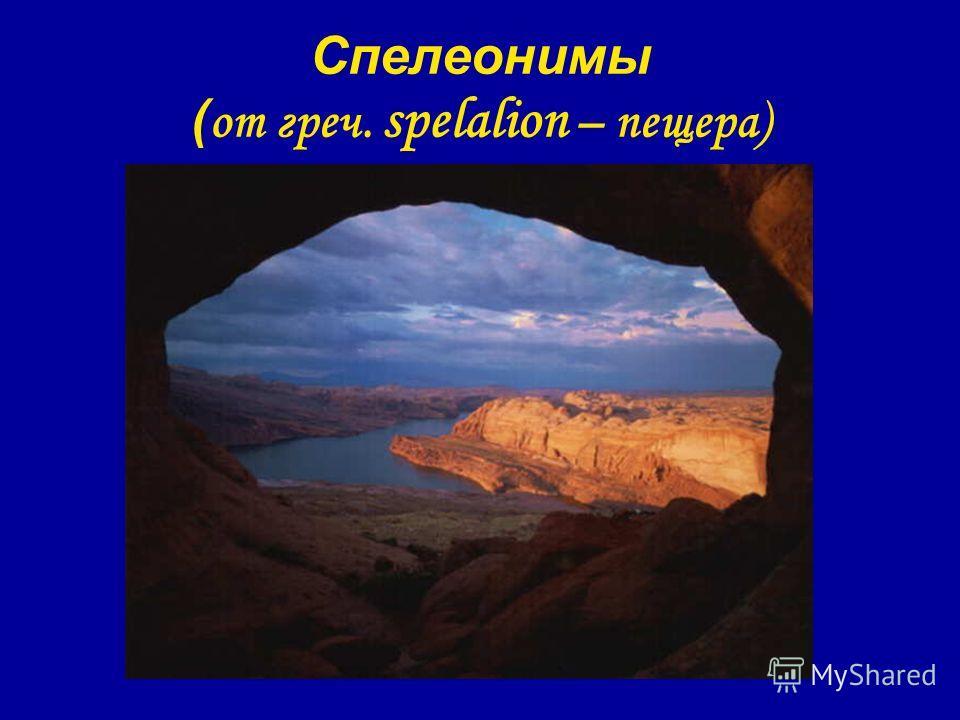 Спелеонимы ( от греч. spelalion – пещера)