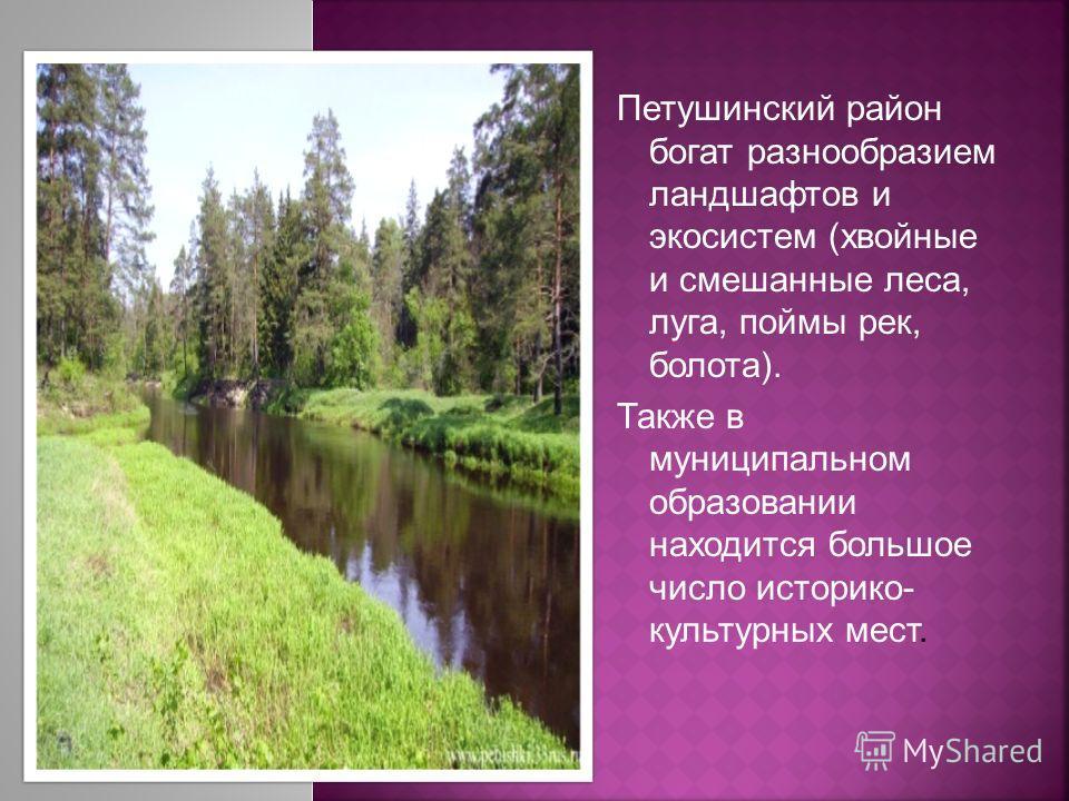 Петушинский район богат разнообразием ландшафтов и экосистем (хвойные и смешанные леса, луга, поймы рек, болота). Также в муниципальном образовании находится большое число историко- культурных мест.