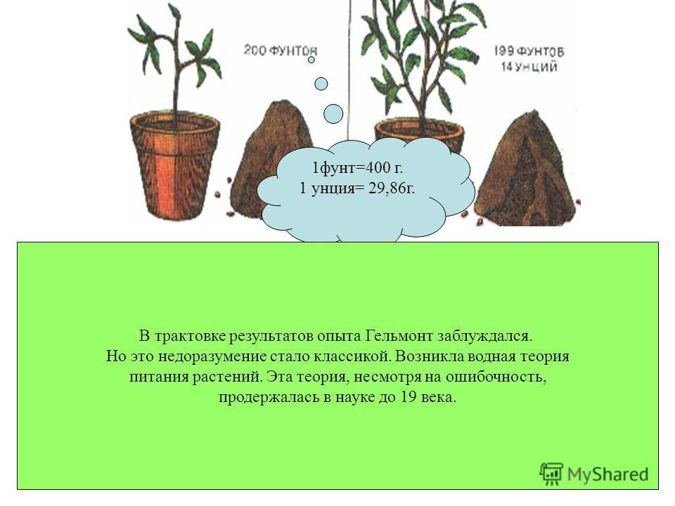 Гельмонт посадил ветку ивы в горшок, наполненный землёй. Землю он просушил в печи и взвесил. Масса земли была 200 фунтов. Горшок был покрыт крышкой, чтобы в него не попадали пыль и сор. Иву поливали дождевой водой, и никому не дозволялось прикасаться