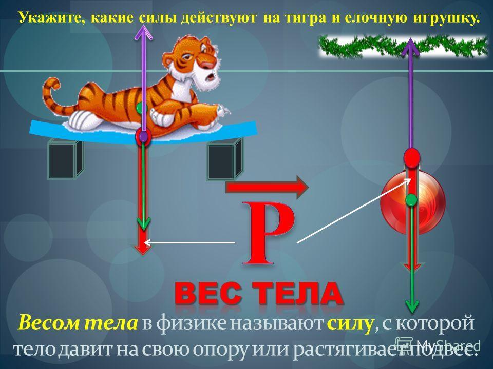 Укажите, какие силы действуют на тигра и елочную игрушку. Весом тела в физике называют силу, с которой тело давит на свою опору или растягивает подвес.