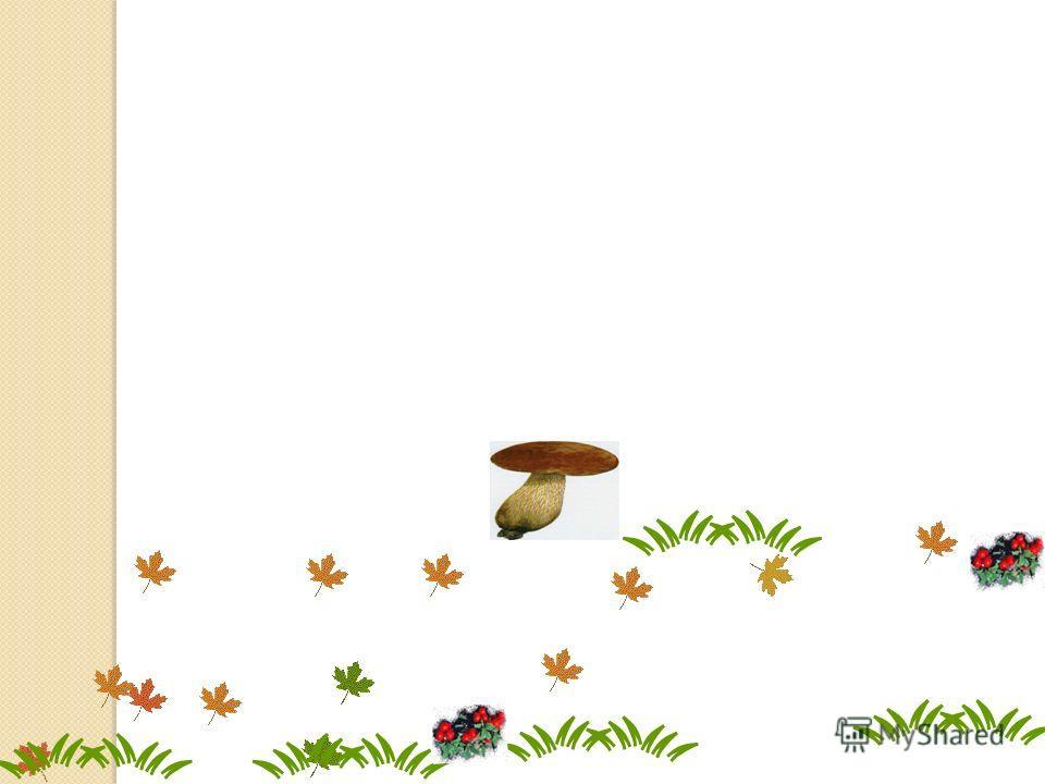 Маша собрала от всех грибов, Петя от остатка. Сколько грибов осталось на поляне?