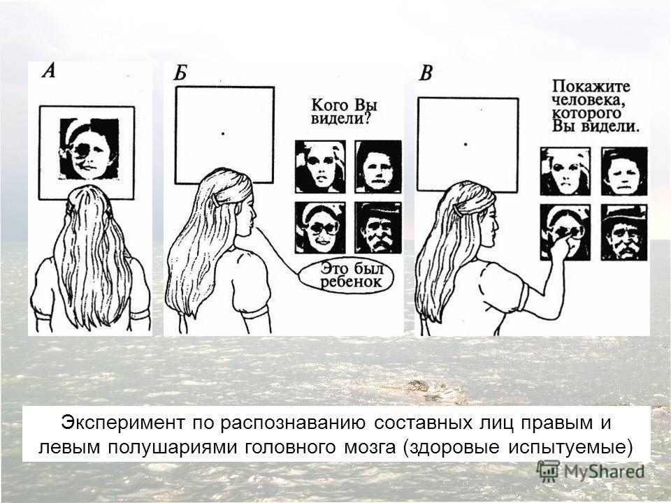 Эксперимент по распознаванию составных лиц правым и левым полушариями головного мозга (здоровые испытуемые)