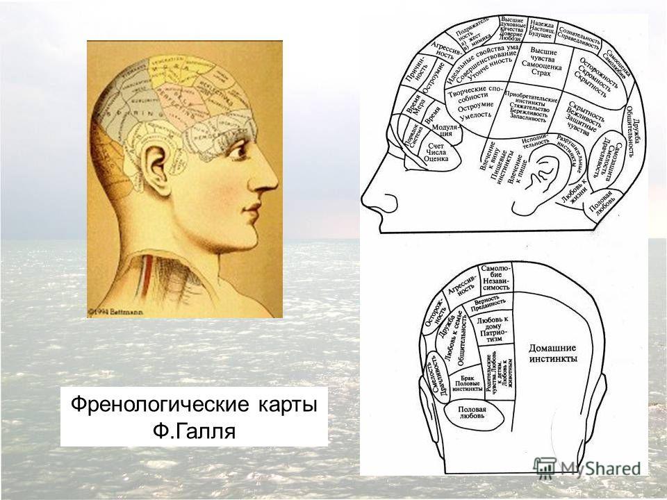 Френологические карты Ф.Галля