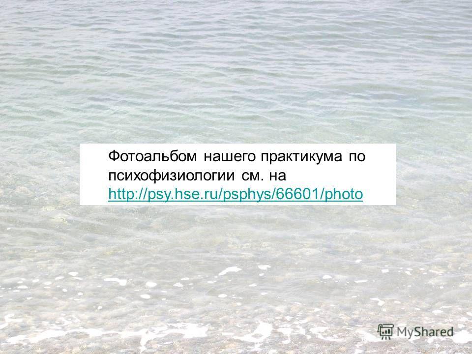 Фотоальбом нашего практикума по психофизиологии см. на http://psy.hse.ru/psphys/66601/photo http://psy.hse.ru/psphys/66601/photo