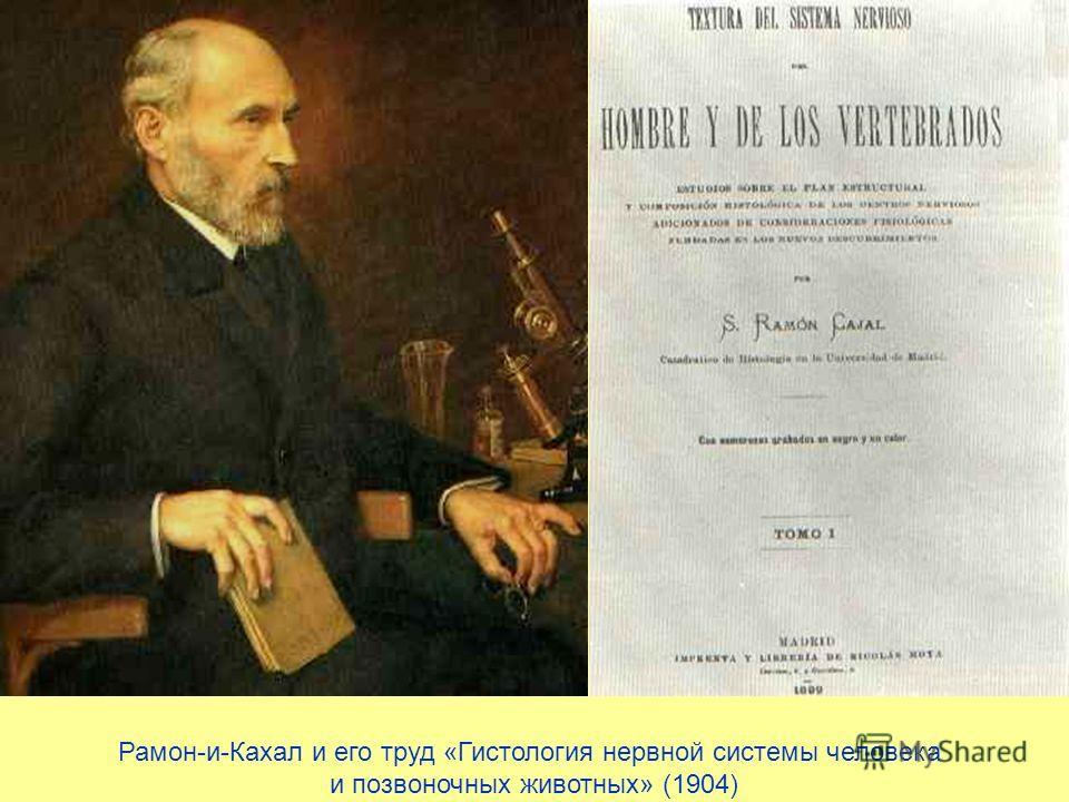 Рамон-и-Кахал и его труд «Гистология нервной системы человека и позвоночных животных» (1904)