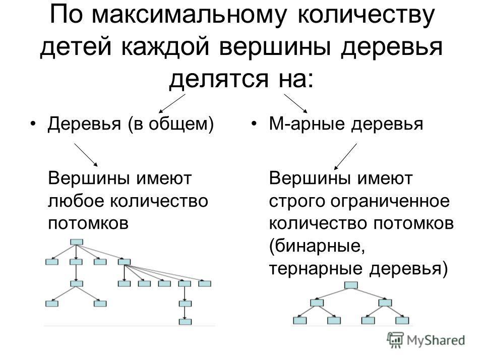По максимальному количеству детей каждой вершины деревья делятся на: Деревья (в общем) Вершины имеют любое количество потомков М-арные деревья Вершины имеют строго ограниченное количество потомков (бинарные, тернарные деревья)
