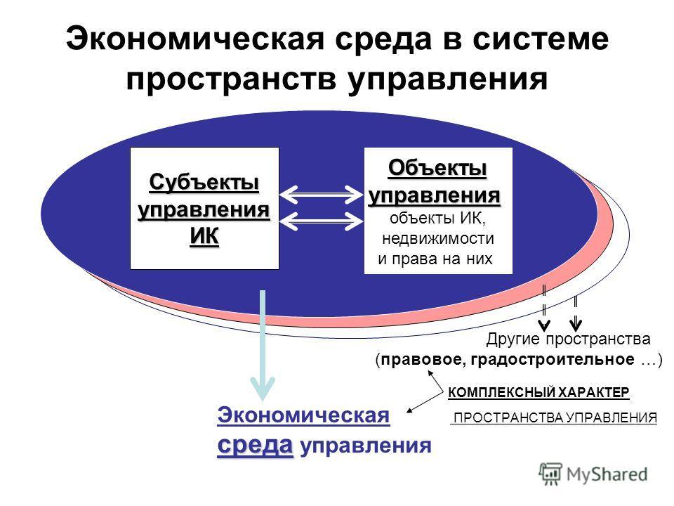 Другие пространства (правовое, градостроительное …) КОМПЛЕКСНЫЙ ХАРАКТЕР Экономическая ПРОСТРАНСТВА УПРАВЛЕНИЯ среда среда управления СубъектыуправленияИК Объектыуправления объекты ИК, недвижимости и права на них Экономическая среда в системе простра