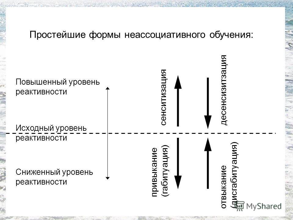 Простейшие формы неассоциативного обучения: Исходный уровень реактивности Сниженный уровень реактивности Повышенный уровень реактивности сенситизация отвыкание (дисгабитуация) привыкание (габитуация) десенсизитзация