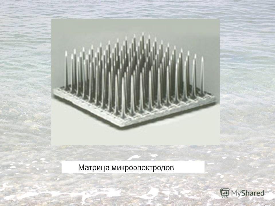 Матрица микроэлектродов