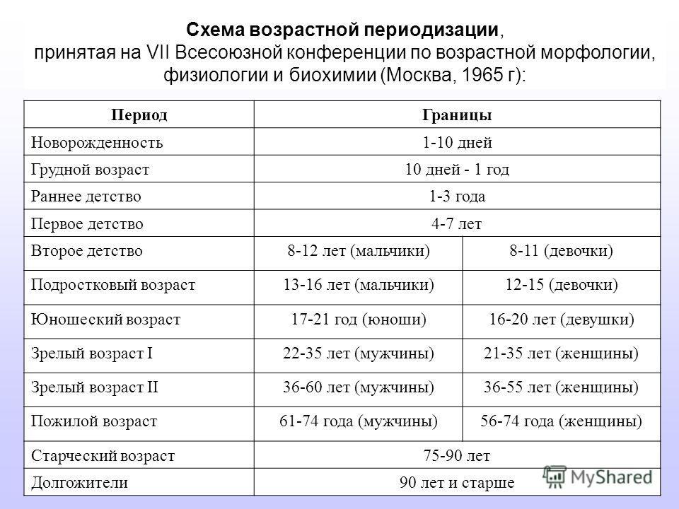 Схема возрастной периодизации