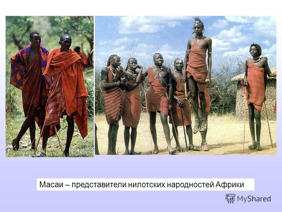 Масаи – представители нилотских народностей Африки