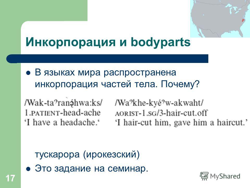 17 Инкорпорация и bodyparts В языках мира распространена инкорпорация частей тела. Почему? тускарора (ирокезский) Это задание на семинар.