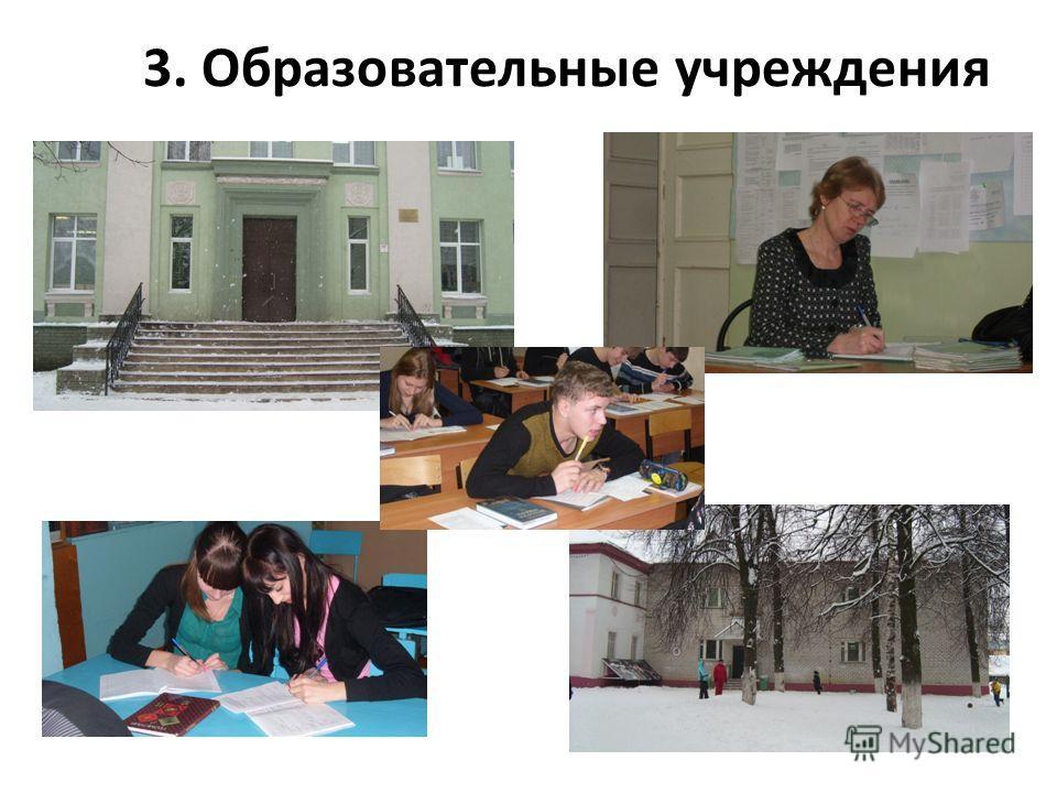 3. Образовательные учреждения