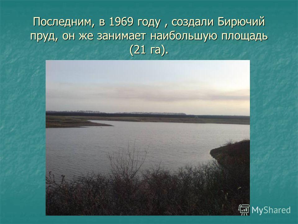 Последним, в 1969 году, создали Бирючий пруд, он же занимает наибольшую площадь (21 га).